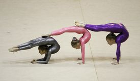 Rhythmic gymnastics tournament Stock Image