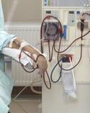 Riñón de la medicina del cuidado médico de la diálisis Imagenes de archivo