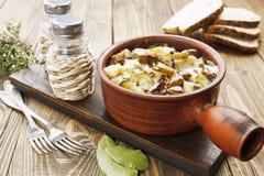 Riñón, guisado con las patatas y las salmueras Imagen de archivo libre de regalías