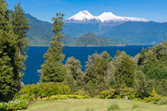 Riñihue lake and Mocho-Choshuenco national reserve as background (Chile) Royalty Free Stock Photo
