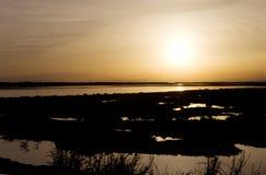 Ria Формоза - Faro, заход солнца лагуны, перемещение Алгарве Стоковые Изображения RF