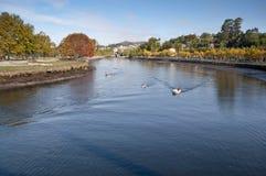 Ria di Pontevedra Fotografie Stock