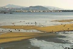 Ria di Vigo Fotografia Stock