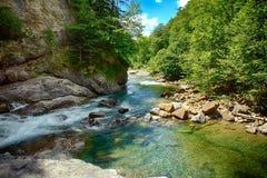 Riacho e floresta alpinos do mountaine no parque nacional de Ordesa foto de stock royalty free