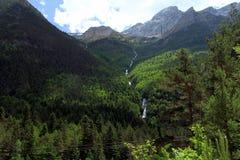 Riacho e floresta alpinos do mountaine no parque nacional de Ordesa fotografia de stock royalty free