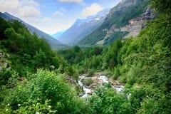 Riacho e floresta alpinos do mountaine no parque nacional de Ordesa foto de stock