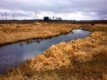 Riacho em beira-rio de Letónia com grama alta Fotos de Stock