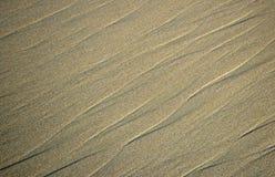 Riachos na areia na praia da angra de Shaws no Laguna Beach, Califórnia Imagem de Stock Royalty Free