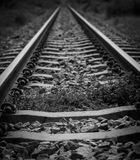 Rial road track Stock Photography