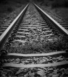 Rialstraßenbahn Stockfotografie