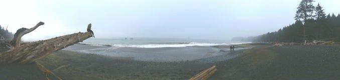 Rialto海滩 库存照片
