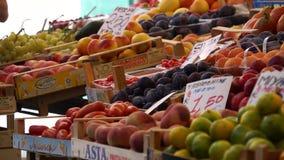Rialto食品批发市场的场面在威尼斯(20 22) 股票录像