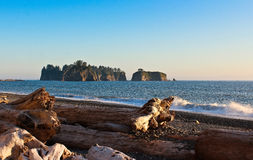 Rialto Beach, Olympic NP Royalty Free Stock Images