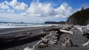 Rialto Beach, Washington State, USA. Driftwood on the beautiful Rialto Beach in Washington State, USA. The sun is shining with blue skies with some white clouds Royalty Free Stock Images