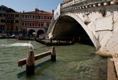 Rialto-Brücke auf Grand Canal in Venedig stockbild