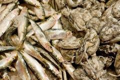 Rialto Fish Market Stock Image