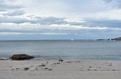 Riazor plaża z kobietą czyta książkę Deszczowy dzień, los angeles Coruna, Hiszpania obrazy royalty free
