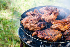 Free Rib-eye On The Grill Royalty Free Stock Photo - 15223815