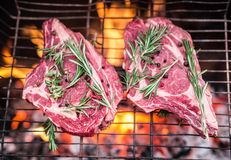 Rib eye steaks and grill. Rib eye steaks and grill with burning fire behind them Stock Image