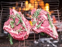 Rib eye steaks and grill with burning fire behind them. Stock Photos