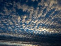 Ribbade moln på solnedgången Arkivbilder