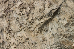 Ribbed texture of volcanic rocks on the cliff of Cape Fiolent Stock Photo