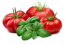 Ribbed tomatoes with Basil, paths. Fresh ribbed tomatoes with Genovese basil.Clipping paths, shadows separated, infinite depth of field. Design elements Royalty Free Stock Photos