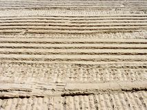 Ribbed wheel tracks on dry sand. Royalty Free Stock Photo