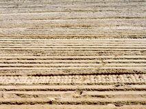 Ribbed wheel tracks on dry sand Royalty Free Stock Photos