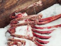 Ribben van vee Stock Foto