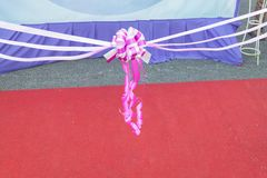 Ribbon bow. Ribbon cutting in ceremony.select focus Royalty Free Stock Image