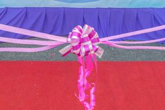 Ribbon bow. Ribbon cutting in ceremony.select focus Royalty Free Stock Images