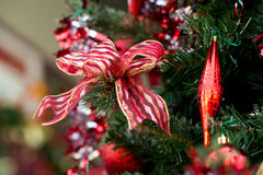Ribbon decorations on Christmas tree Royalty Free Stock Photo