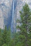 Ribbon Falls Royalty Free Stock Images