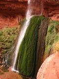 Ribbon Falls Waterfall. Inside the Grand Canyon royalty free stock image