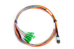Ribbon fiber optic fun out patchcord with connector MTP Royalty Free Stock Images