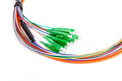 Ribbon fiber optic fun out patchcord with connector MTP Royalty Free Stock Photo