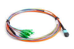 Ribbon fiber optic fun out patchcord with connector MTP Stock Photography