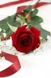 Ribbon rose Stock Photo