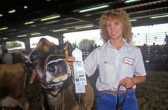 Ribbon winner with Jersey/Holstein cow, Los Angeles, County Fair, Pomona, CA Stock Image