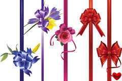 Ribbons with bows and flowers. Royalty Free Stock Image