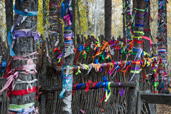 Ribbons on Trees and Wooden Fence Royalty Free Stock Images