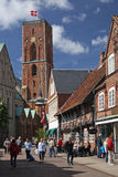 Ribe Royalty Free Stock Photos
