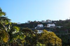 Ribeira Brava på sydkusten av ömadeiran, Portugal fotografering för bildbyråer