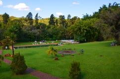 Ribeirao Preto, región Minas Gerais, el Brasil: un lugar para la hacienda del local de la relajación Imagen de archivo