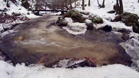 Ribeiro da montanha no inverno video estoque