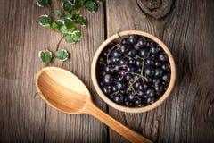 Ribes nero in ciotola di legno Fotografie Stock