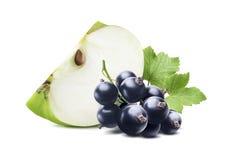 Ribes nero verde del pezzo della mela isolato su fondo bianco Fotografie Stock