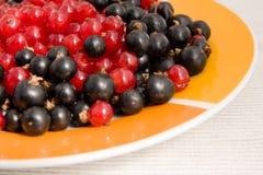 Ribes rossi e neri Fotografia Stock Libera da Diritti