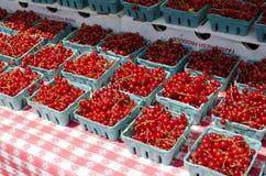 Ribes rosso Immagini Stock